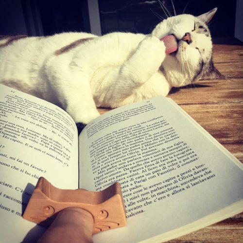 Apri-libro